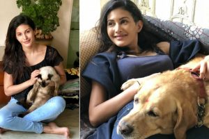 'Kaalakaandi' actress Amyra Dastur's unique charity for pet lovers!