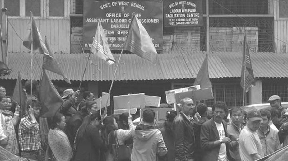 GNLF, trade union, Hill shutdown, tea workers