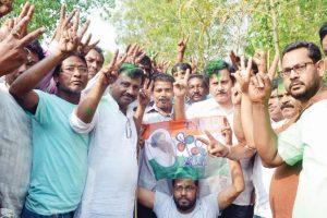 'TMC scripts history in ZP polls'