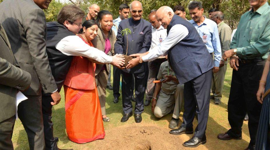 Baobab sapling, President, Ram Nath Kovind, Rashtrapati Bhavan