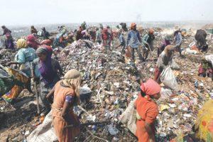 Critical to segregate waste