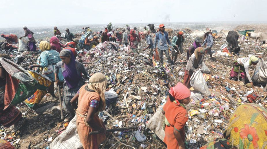 segregate waste, Ministry of Environment, landfills, Solid Waste Management Rules