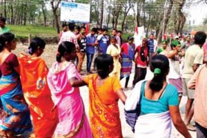 TMC efforts fail to stop lotus bloom in Dooars tea belt