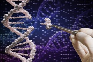 DNA data banks to be set up at national, state level to store DNA profiles