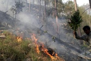 Widespread forest fire creates panic in Uttarakhand