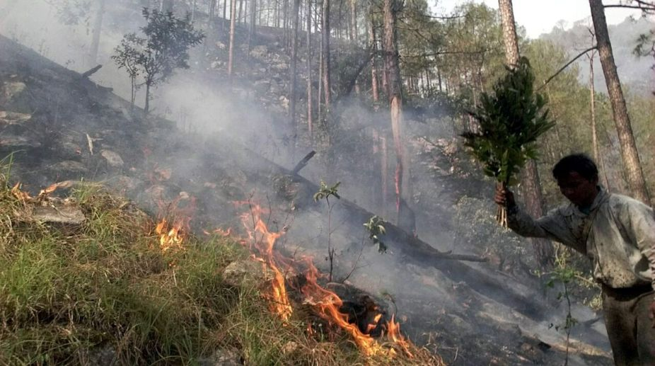 Himachal Pradesh, HP forest fire, forest fire, Himachal weather, Himachal heat waves