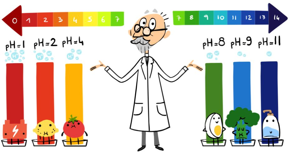 Google Doodle, Soren Peder Lauritz Sorensen, pH scale