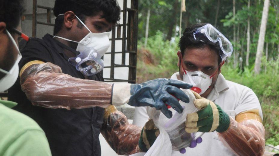 Kerala, Nipah virus, advisory, governments