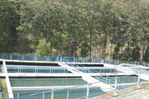 Plan to restore old water source worries Shimla locals