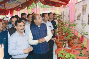 Himachal Pradesh to plant pollution reducing trees