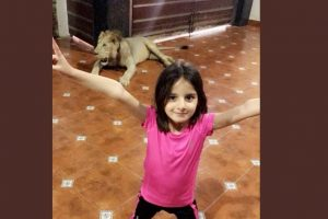 Shahid Afridi trolled for photo showing his daughter striking a pose with lion in background