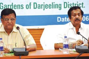 Bengal to appoint more distributers, ration dealers