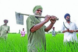 PM's interaction with farmers: Capt seeks debt waiver, Swaminathan report implementation
