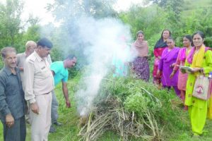 HP panchayats join hands against drinking, drugs
