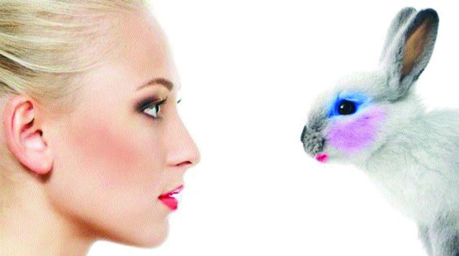 animals, animal testing, John McArdle, humans