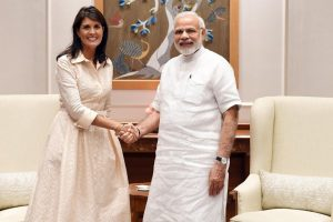 US won't tolerate Pakistan giving safe havens for terrorists: Nikki Haley