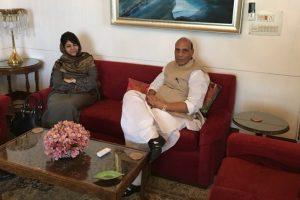 Rajnath Singh discusses security scenario separately with J-K Governor, CM