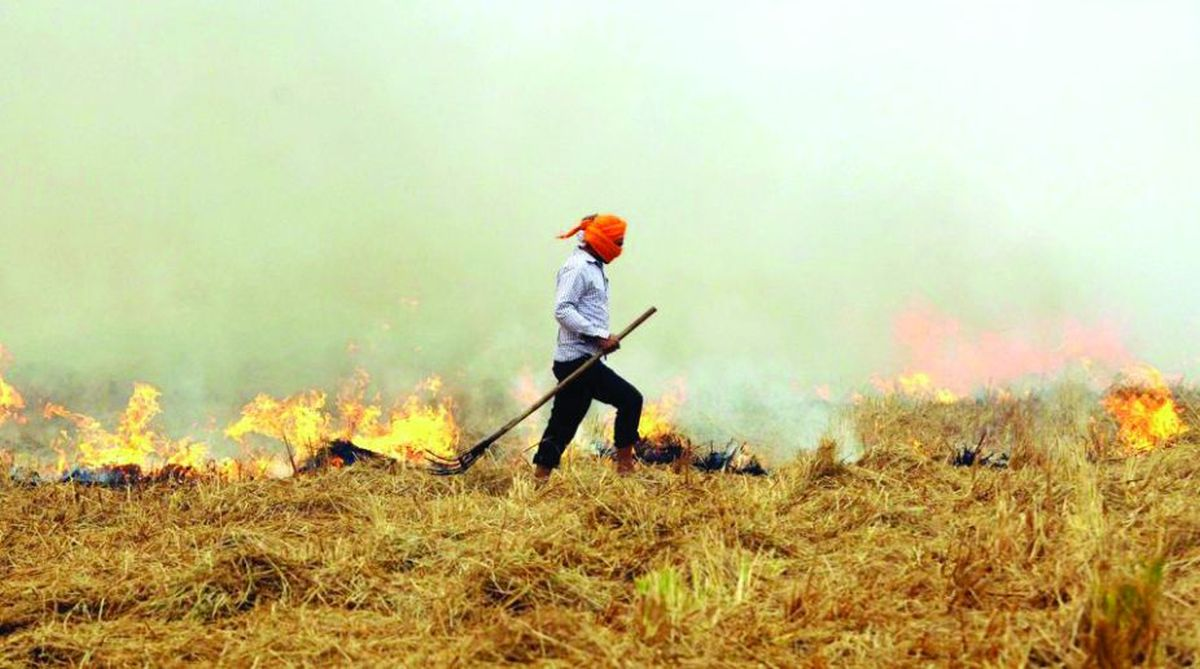 Stubble burning, Haryana government, Custom Hiring Centres, crop residue management