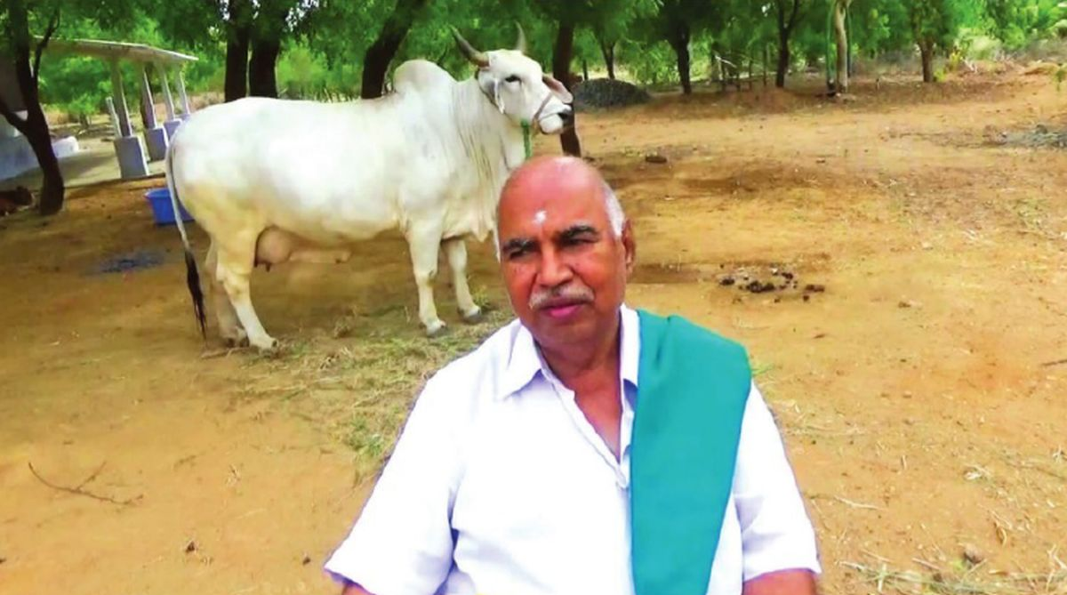 Panchgavya, K. Natarajan, The Other India Bookshop, organic farming