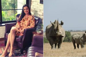 Baby rhino named after Bollywood actress Dia Mirza