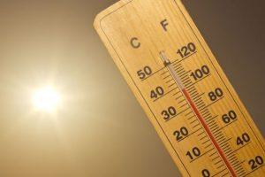 Heat wave in Japan leaves 65 dead, 22,000 hospitalised