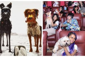 Isle of Dogs:  Dogs and their owners invited for a special screening | See pics