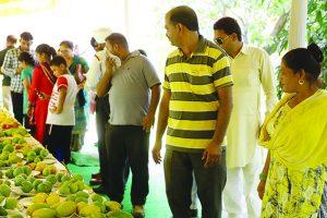 Mango Mela at Pinjore concludes