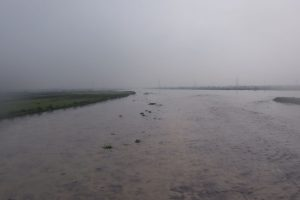 Yamuna crosses danger mark; water released by Haryana to hit Delhi today