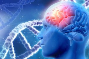 Antidepressant can delay ageing of brain cells: Study
