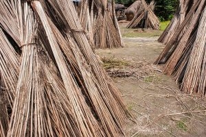 Exports of jute products to rise despite concerns over quality