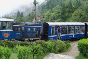 Darjeeling toy train services suspended for 4 days