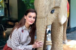 Dia Mirza launches 'wild anthem'