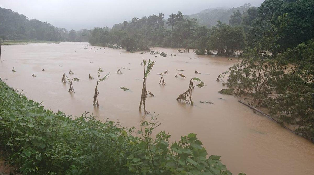 coffee planters, Karnataka flood, Karnataka floods, Karnataka floods loss,