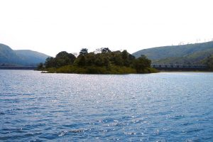 SC tells Tamil Nadu to maintain Mullaperiyar dam water level to 139 feet