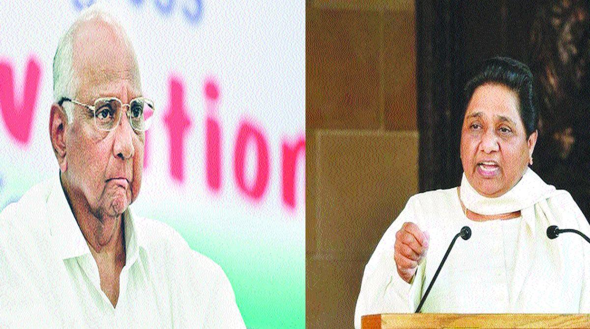 Praful Patel, Mayawati, Sharad Pawar, Lok Sabha poll, BSP, Neeraj Shekhar, Rajya Sabha, Amit Shah, Sitaram Yechury, 2019 Lok Sabha election