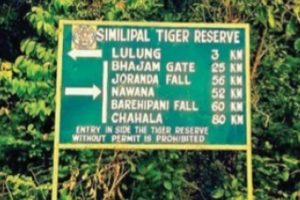 Inhabitants of Similipal Tiger Reserve take up road repairing job