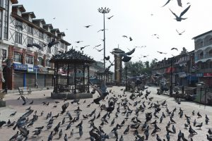 Shutdown over Article 35A cripples life across Kashmir for second day