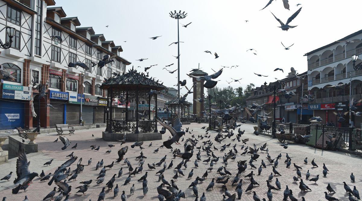 Srinagar, Article 35A, Kashmiri pandits