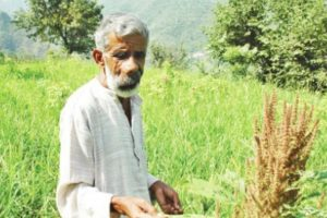 A battle to preserve seeds