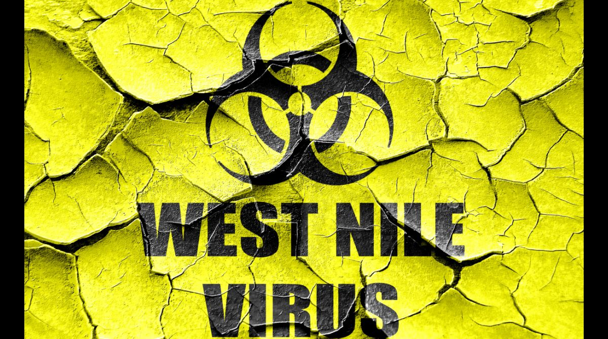 What is West Nile virus? Suspected case in Kerala, second sample to be sent to NIV