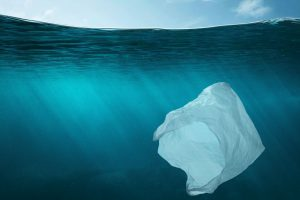 Non-food products overlooked as water pollution sources