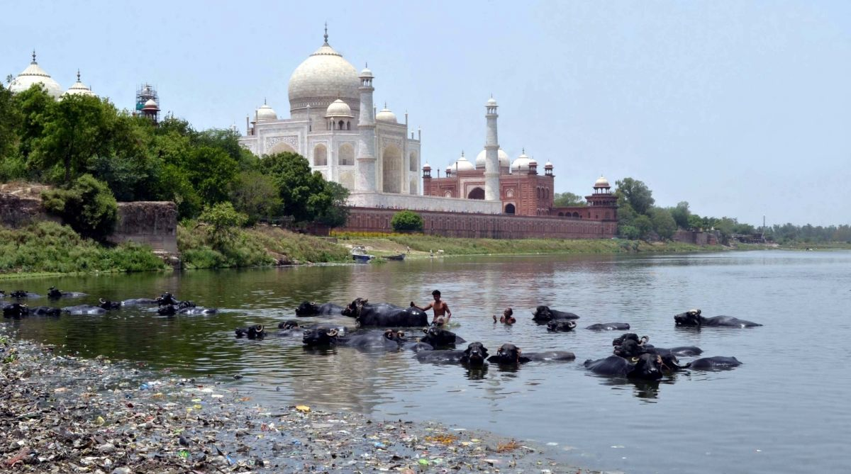 Cycle expedition, Pramod Kumar Katara, Yamuna river, Taj Mahal, polluted Yamuna