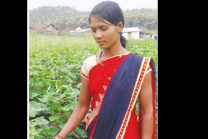 How cotton farming reaping benefits in Chhindwara