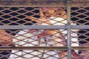 Himachal prison authorities give wings to imprisoned mother