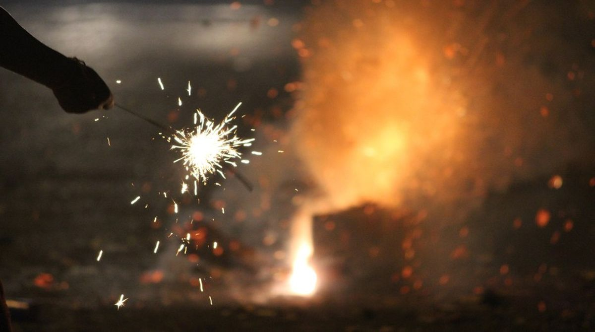 firecrackers ban, Delhi firecrackers ban, Central Pollution Board, green crackers, Tamil Nadu government, Diwali