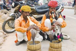 Folk artists' displacement and loss of livelihood