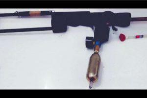 Tranquiliser gun to rein in stray cattle