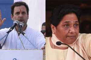 Mayawati's decision to go alone in MP won't affect Cong prospects: Rahul Gandhi