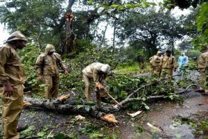Cyclone Titli: 13 who took shelter on a hill to save life die in landslide