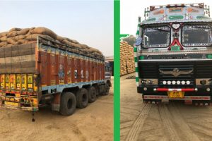 Paddy from other states smuggled into Punjab for higher MSP